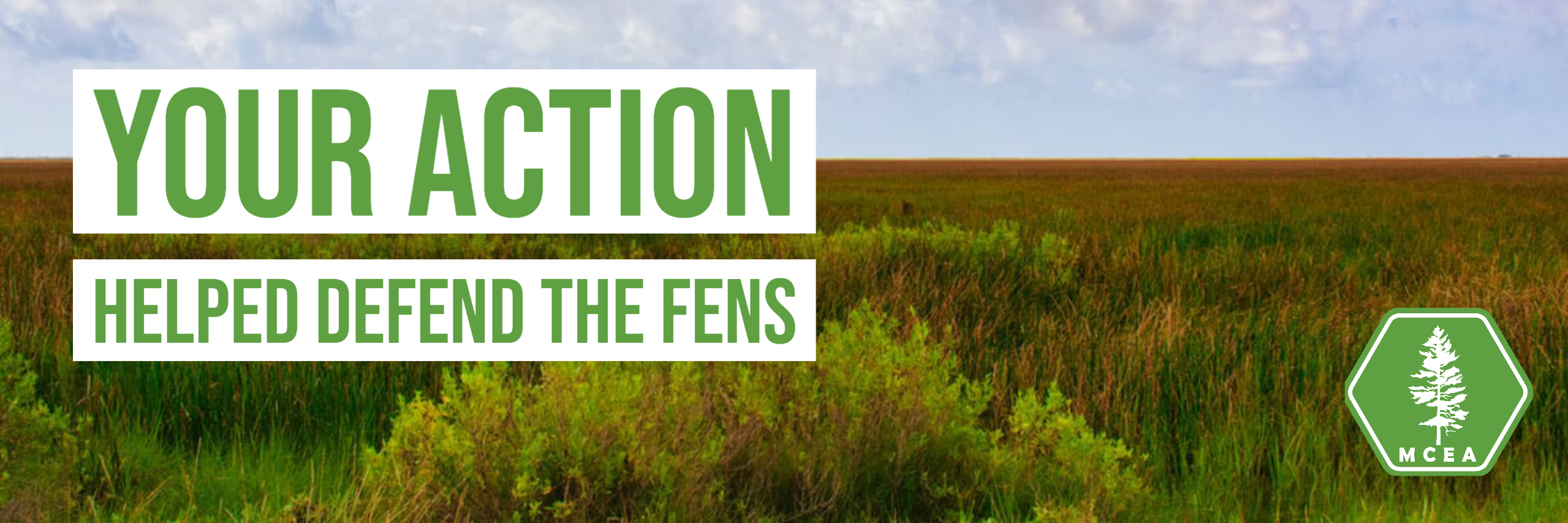 Your action helped defend the fens