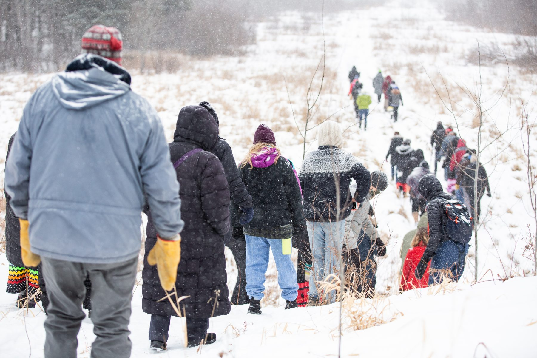 Water Protectors walking on a trail