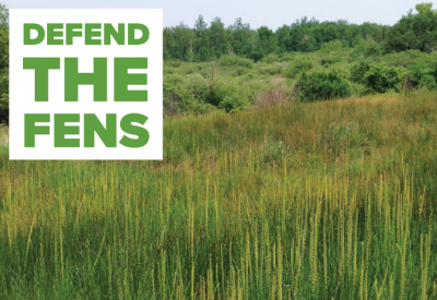 Defend the Fens